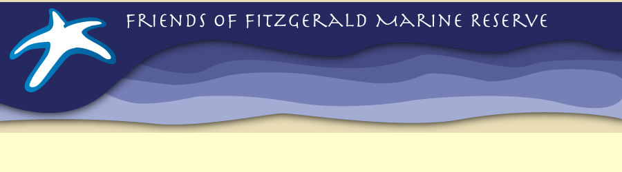 Friends of Fitzgerald Marine Reserve Banner