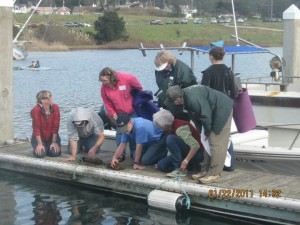 Volunteer Class On Docks