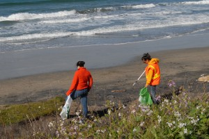 Cleaning Up Surfer's Beach